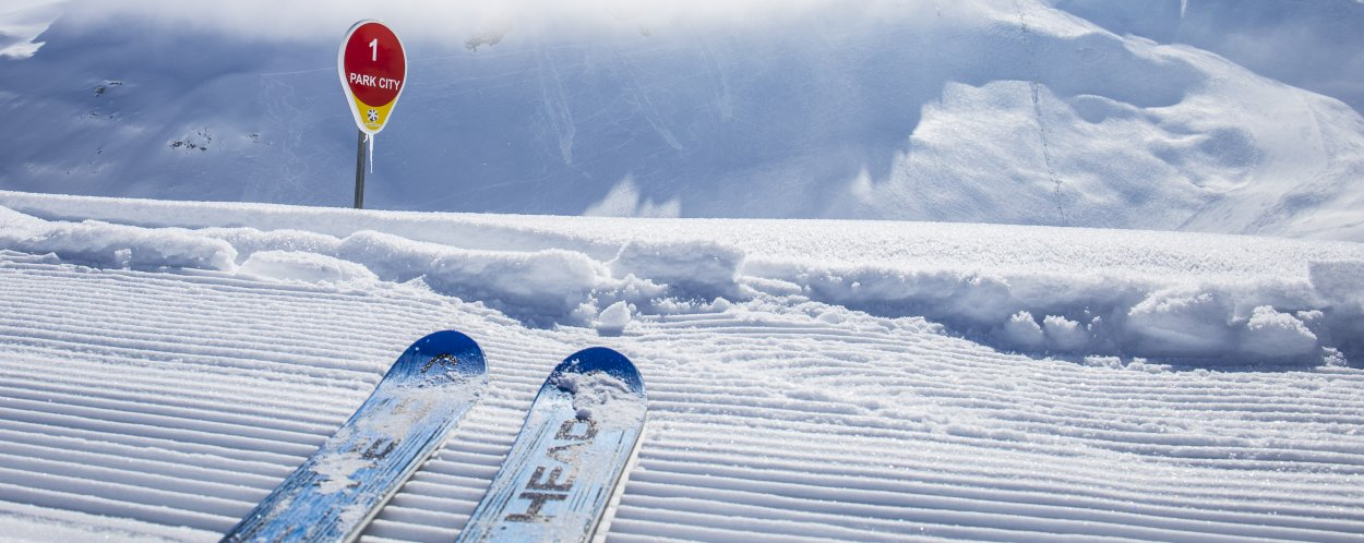 A picture of a single pair of skis